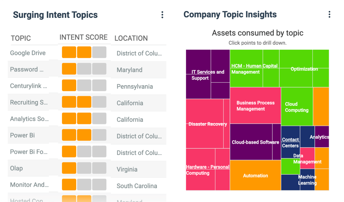 company Intent Data & Topic Insights